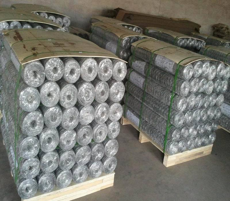1′′ Hexagonal Chicken Wire Mesh 1/2′′ Gi Hexgaonal Wire Mesh pictures & photos