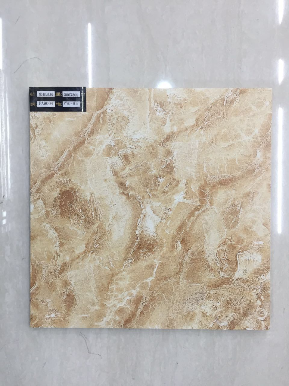 China 300300mm High Quality Rustic Tile Floor Tile Fa9004 China