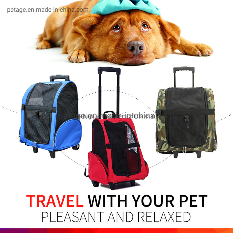 1b5fe92d4a Pet Carrier - China Pet Bag, Pet Products Manufacturers/Suppliers on Made-in -China.com