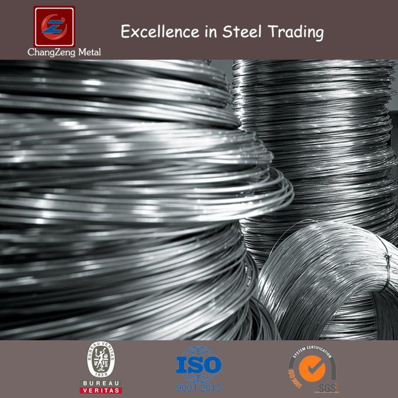 China Hard Drawn Spring Wire (CZ-W07) - China Steel Spring, Spring Steel