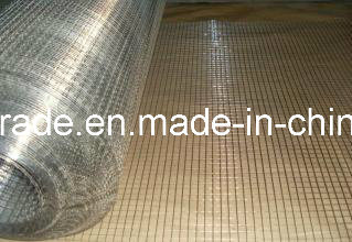 1′′x1′′ High Quality Galvanized Welded Wire Mesh with Low Price pictures & photos