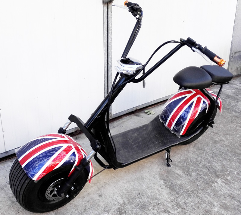 Electric Scooter with 1000W and Lithium Battery