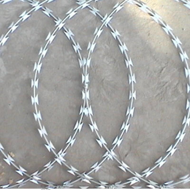 China Bto-22 Galvanized Razor Wire From Factory - China Razor Wire ...