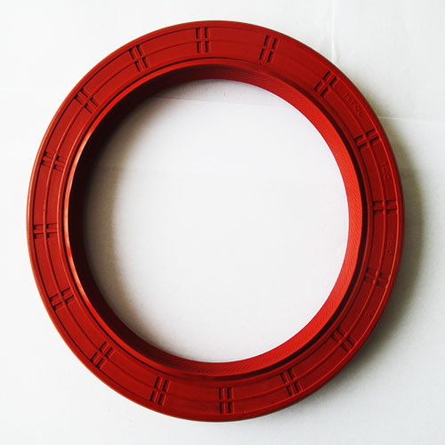 China National Oil Seal Cross Reference FKM Oil Seal - China