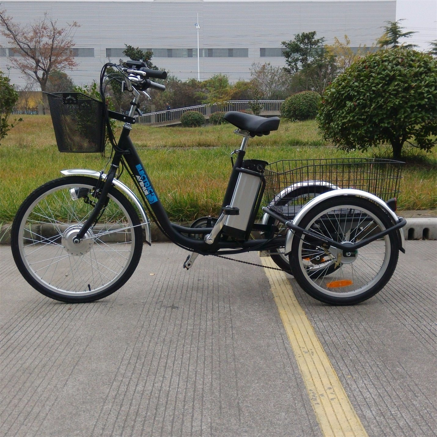 China Front 24 Inch Rear 20 Inch 3 Wheel Handicapped Electric