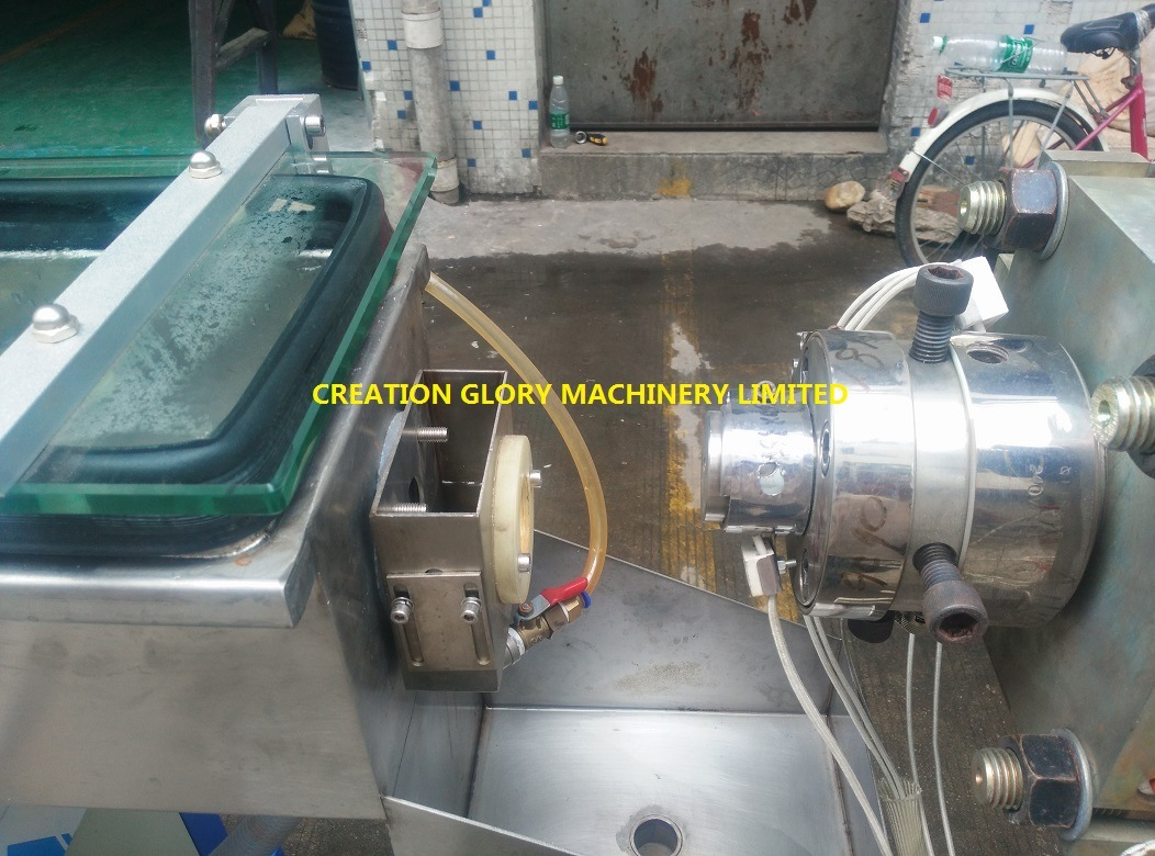 High Precision Leading Technology Medical Tube Plastic Extrusion Machine