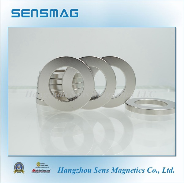 ISO9001 Cusomized Permanent NdFeB Ring Magnet for Motor, Generator