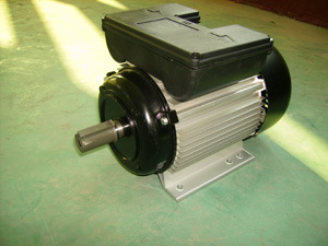 China Yl Single Phase Electrical Motor (YL90L2) - China ... on