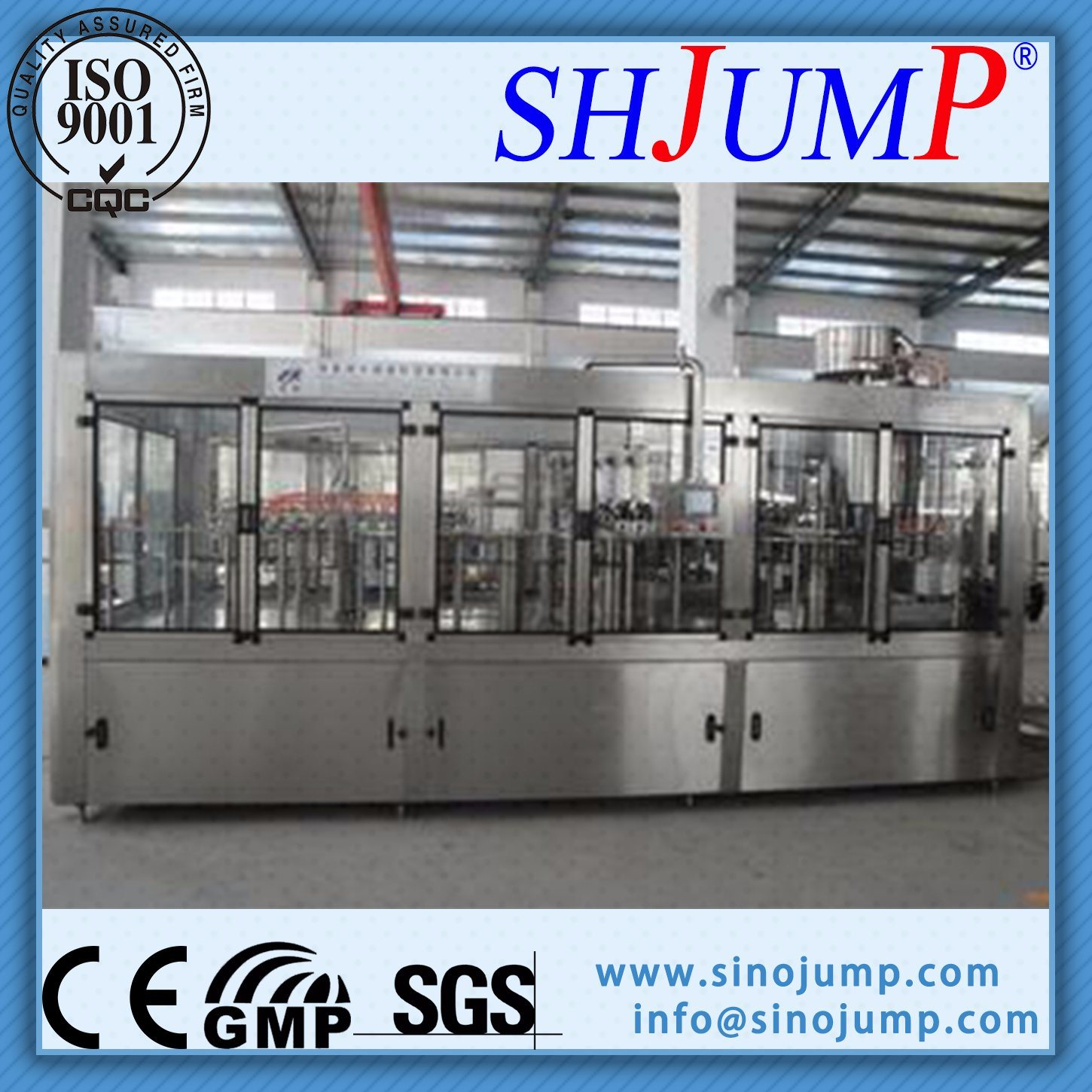 Popular Lychee/Litchi Drink Manufacturing Machines at Good Price