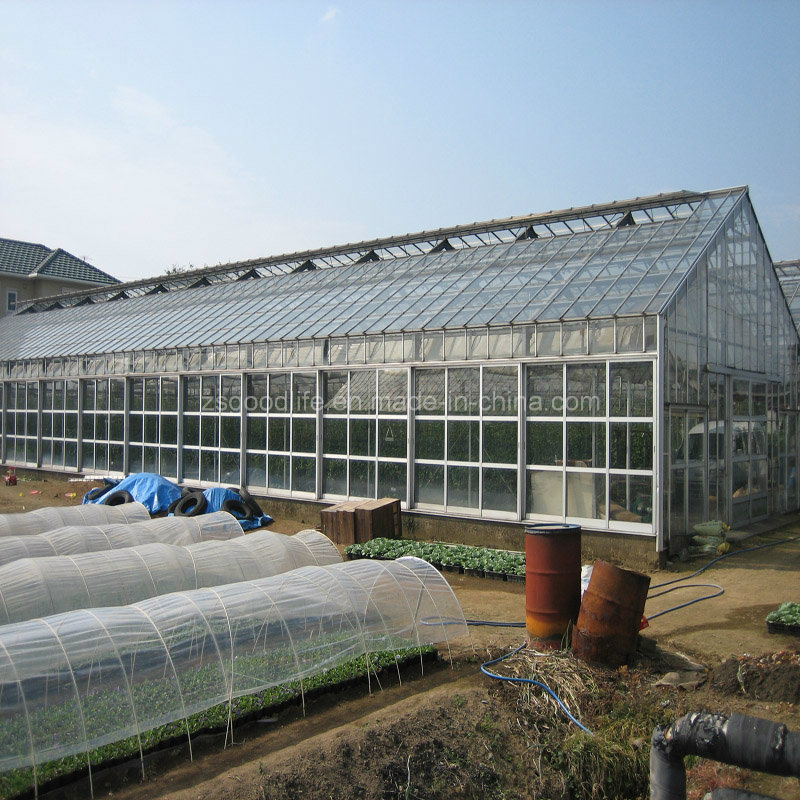20mm Transparent Commercial Plastic Large Small Polycarbonate PC Sheet Greenhouse