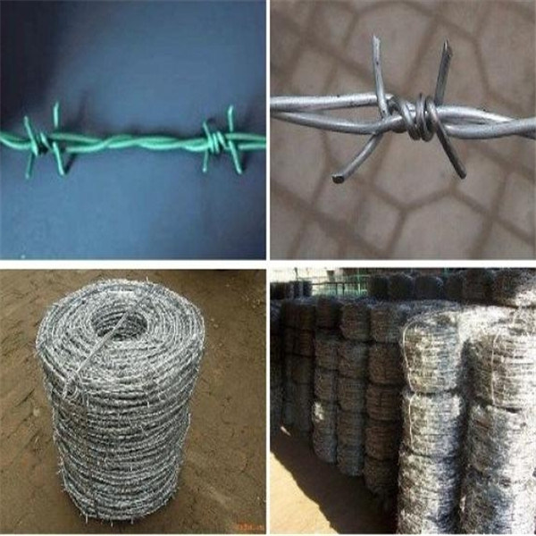 China Galvanized Stainless Steel Barbed Wire - China Barbed Wire for ...