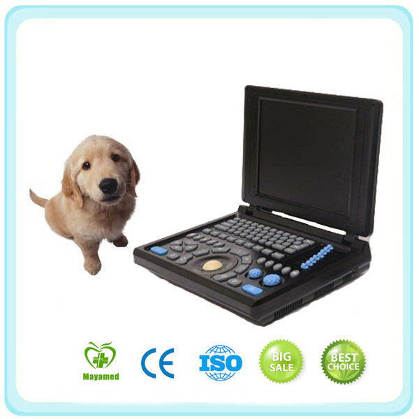 Full Digital PC Laptop Ultrasound Scanner (Veterinary type)