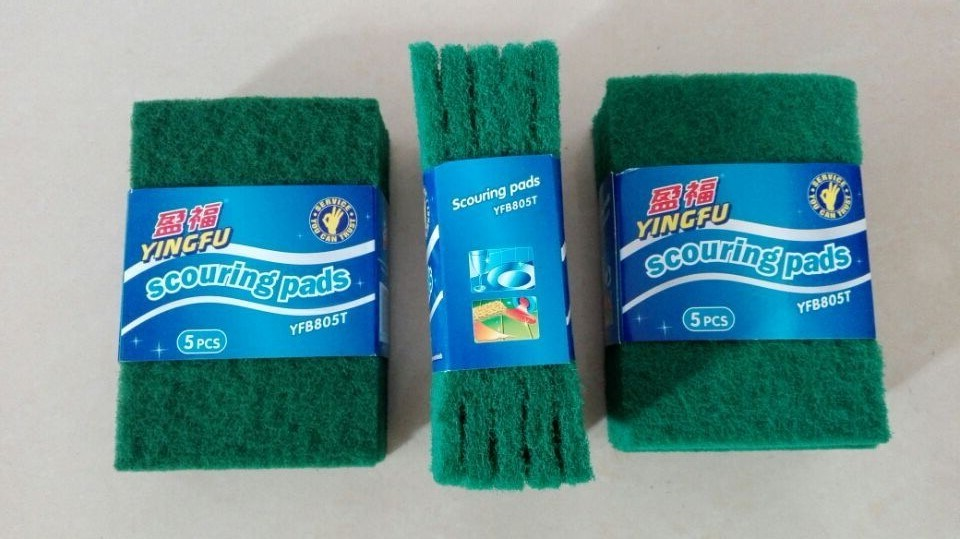 Newest Hot Selling Good Quality Kitchen Cleaning Scourer pictures & photos