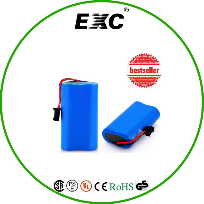 Factory Supply Customized 4000mAh Li-ion 18650 Battery Pack / Lithium Ion Battery Pack 12V 4000mAh