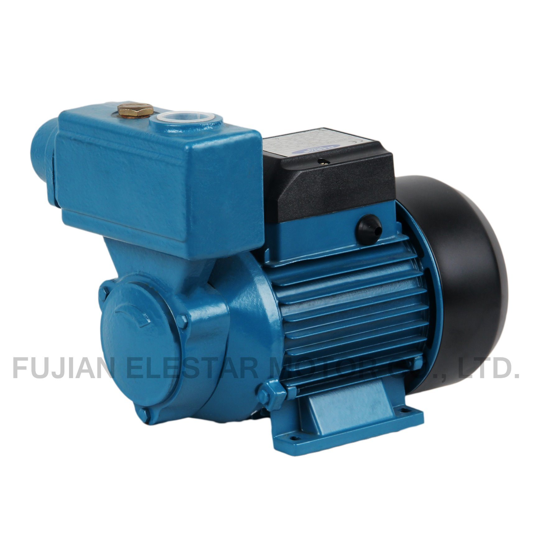China TPS-80 Copper Wire Brss Impeller Water Pump Motor Photos ...