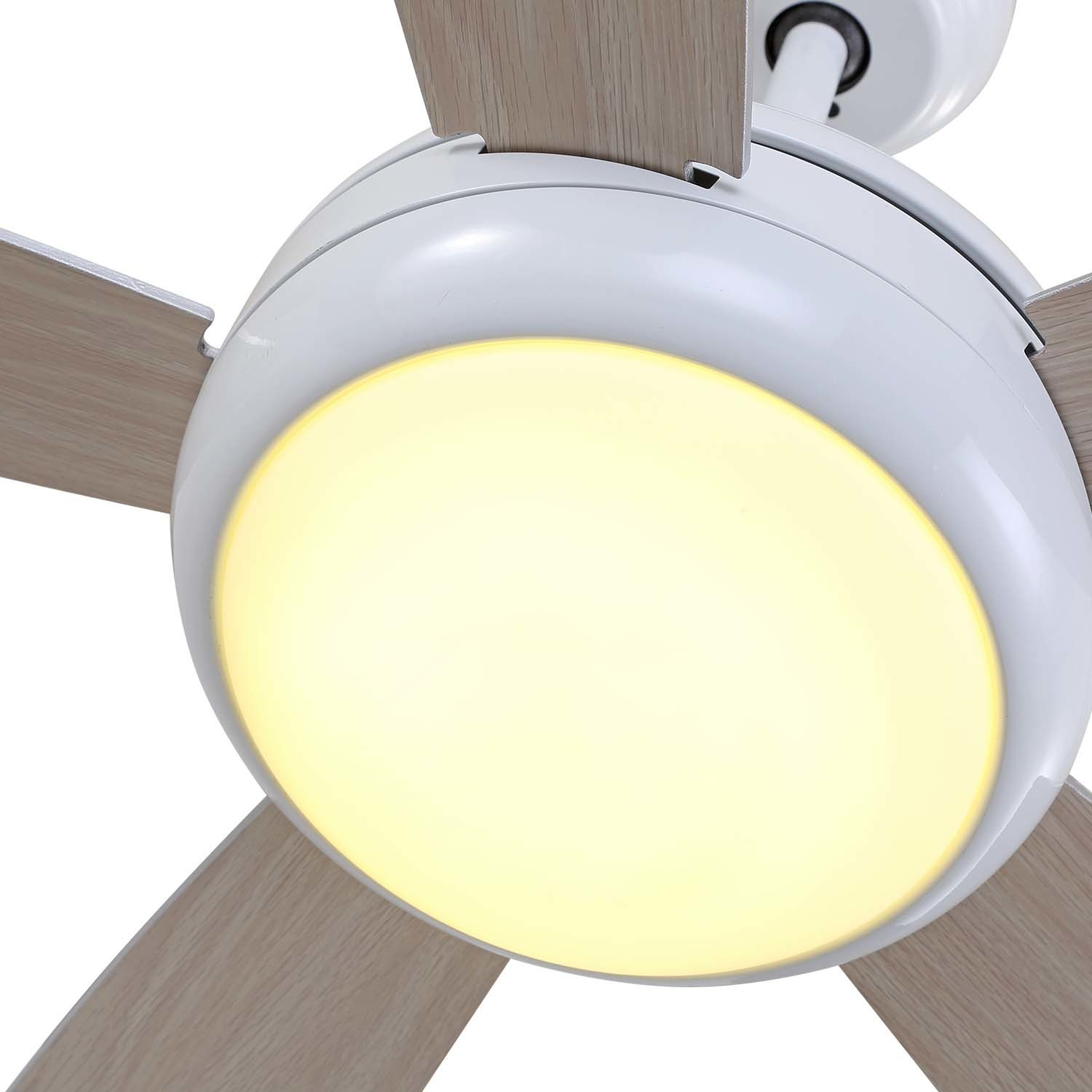 New Bldc Ceiling Fan With 3 Color Light