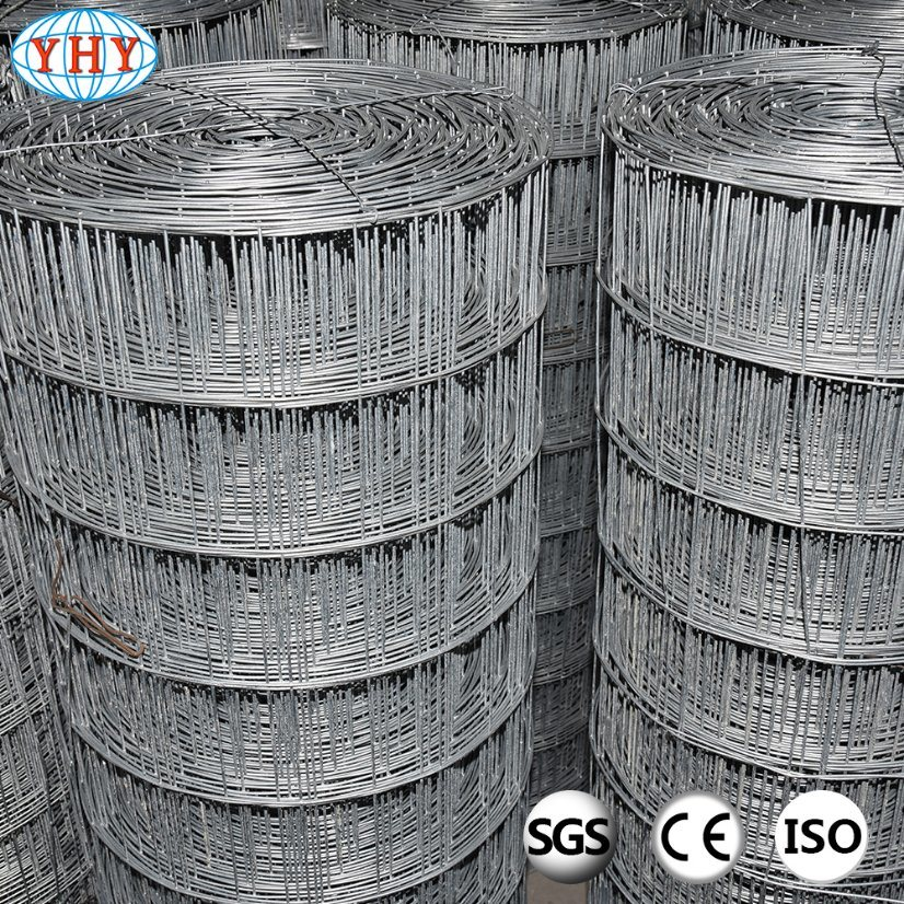 China Rust-Proof Galvanized Before Welding Welded Wire Mesh - China ...
