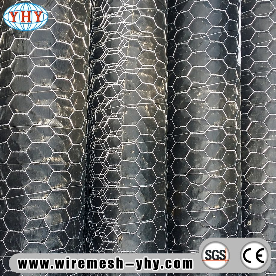 China PVC Coated Galvanized Hexagonal Wire Netting Used for Garden ...