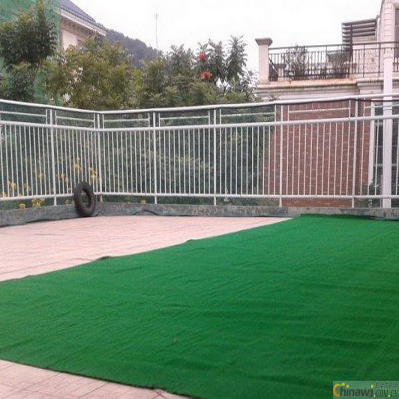 Landscape with Artificial Grass Waterless Lawn pictures & photos