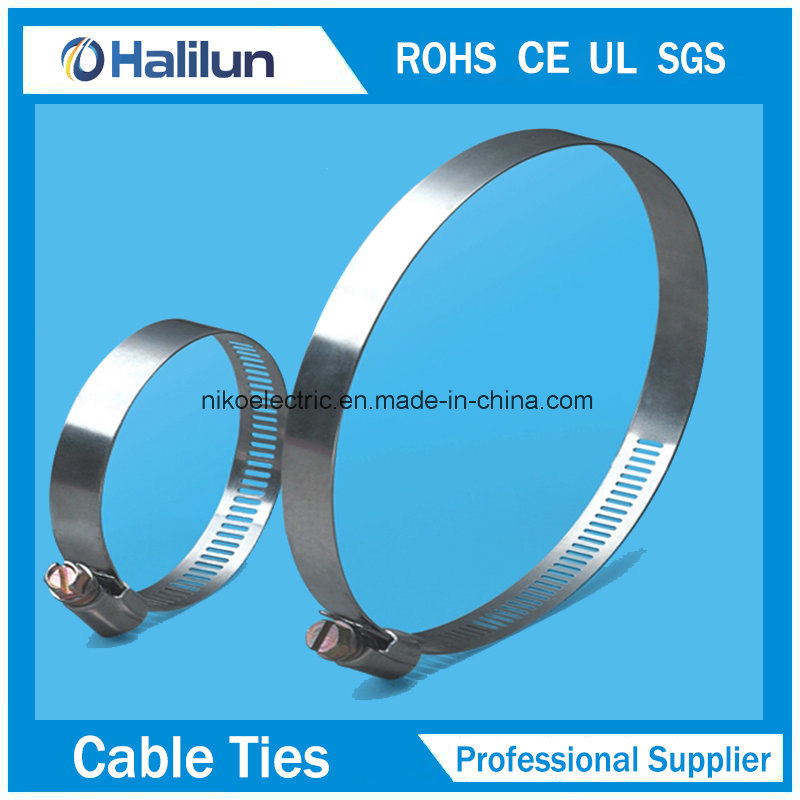 China High Quality American Type Hose Clamp - China Cable Ties ...