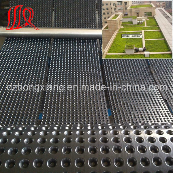 HDPE Dimple Drainage Sheet for Roof Garden pictures & photos