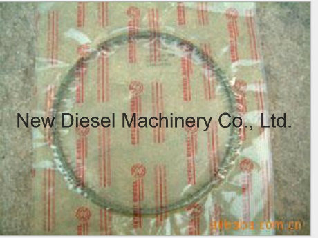 [Hot Item] Mtu Diesel Engine Parts -12V2000 Piston Ring
