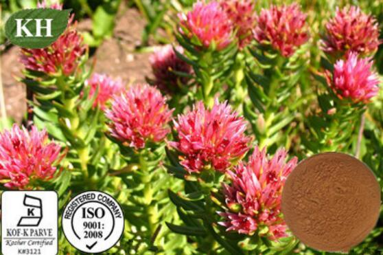 Rhodiola Rosea Extract Good for Your Skin Care pictures & photos