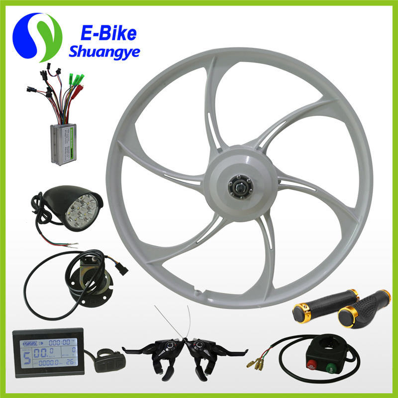 Hot Sell Basic Ebike Eletric Bike Conversion Kit 36V 48V 250W 350W pictures & photos