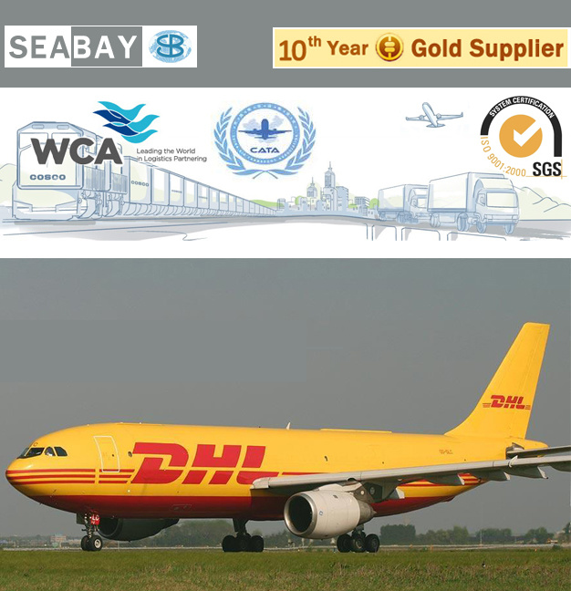 [Hot Item] Freight Forwarder/ Logistic Service From China to Germany