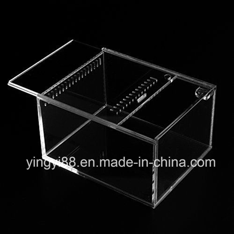 China New Clear Acrylic Reptile Terrarium Shenzhen Manufacturer