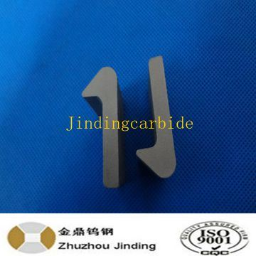 Cemented Carbide Tip for Tamping Tines pictures & photos