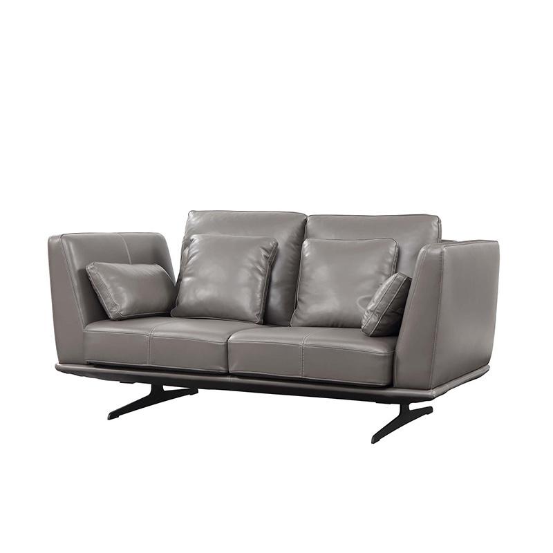 Leather Two Seater Home Use Futon Sofa