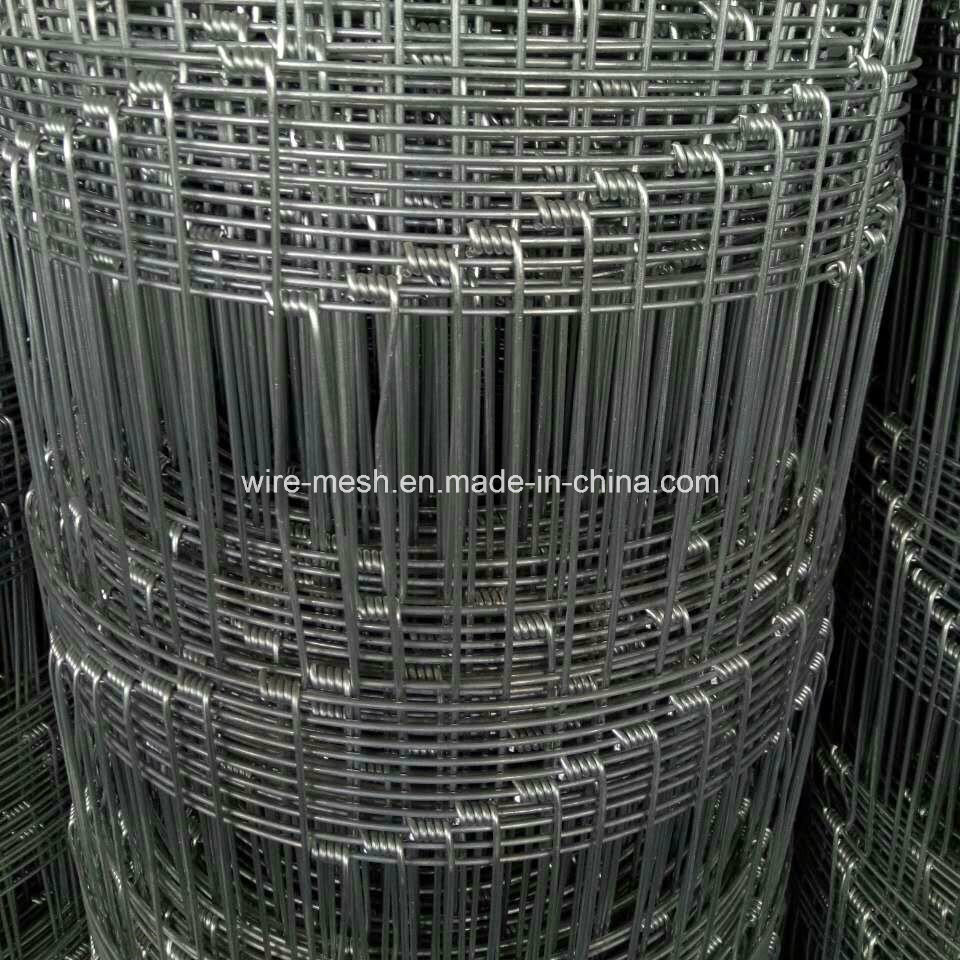 China Galvanized Filded Fence/Farm Fence/Wire Mesh Fence Photos ...