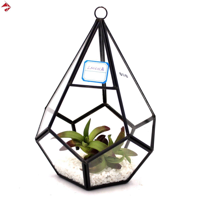 Flower Plant Pots Baskets Window Boxes Diamond Hanging Glass Geometric Terrarium Tabletop Succulent Plant Terrarium Garden Patio Tohoku Morinagamilk Co Jp