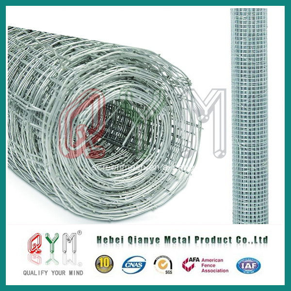 China Hot-Dipped Galvanized Rust-Proof Welded Wire Mesh Roll Price ...