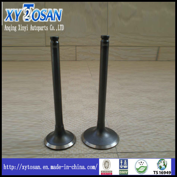 Engine Valve Used for BMW 320I
