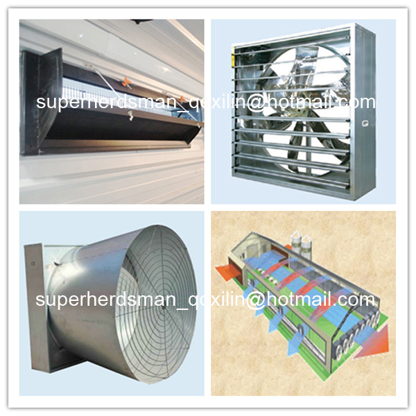 High Quality Full Set Poultry Equipment for Poultry Farming House pictures & photos