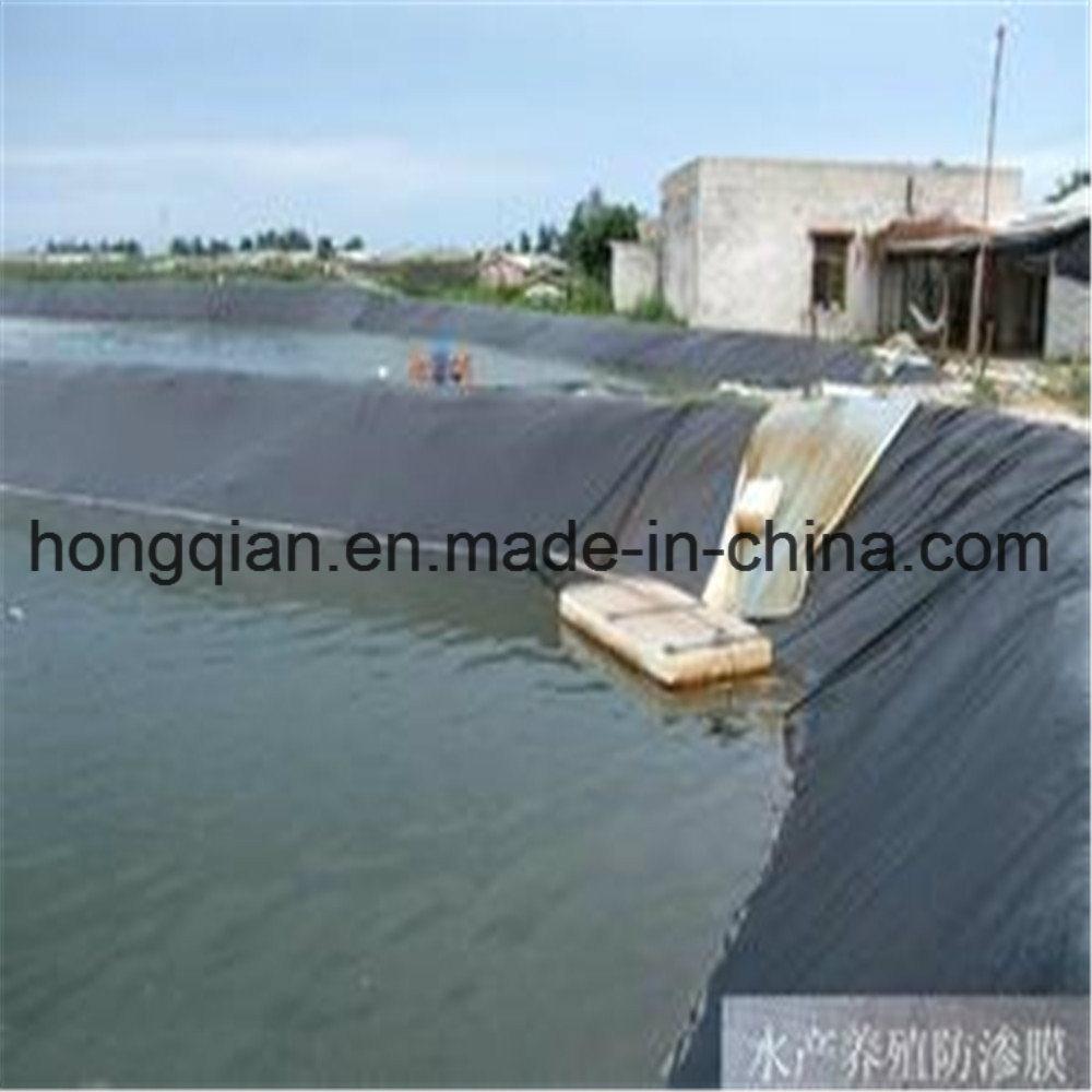 China 05mm06mm 075mm 08mm 1mm 12mm 125mm 15mm16mm china 05mm06mm 075mm 08mm 1mm 12mm 125mm 15mm16mm2mm25mm hdpe geo membrane geomembrane supply company price publicscrutiny Choice Image