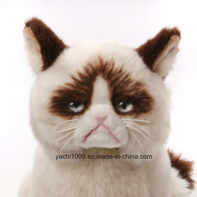 9088b1f6cee1 China Wholesale Custom Plush Stuffed Animal Soft Kids Toy Cat Photos ...