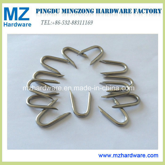 China Electro Galvanised Wire Staples Fence Staples U Type Nail ...