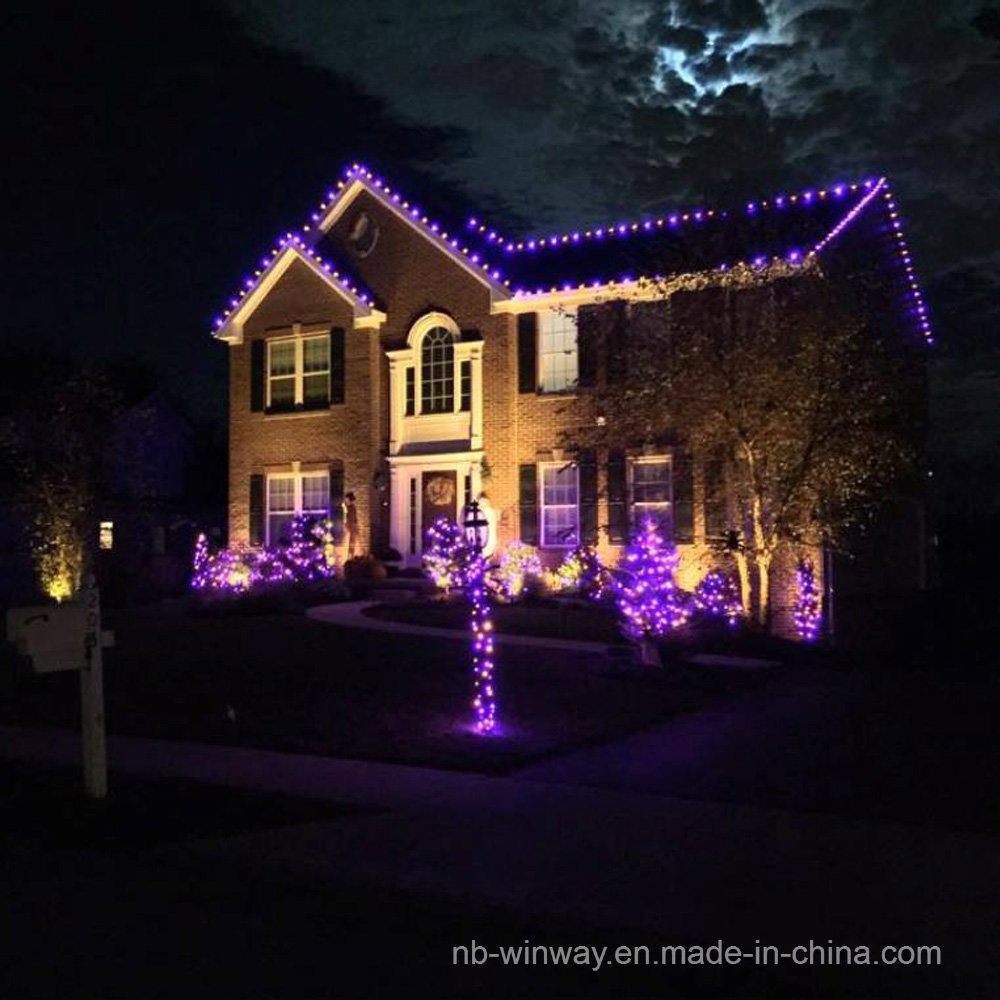 Solar Powered 100 LED Violet Outdoor Christmas String Lights