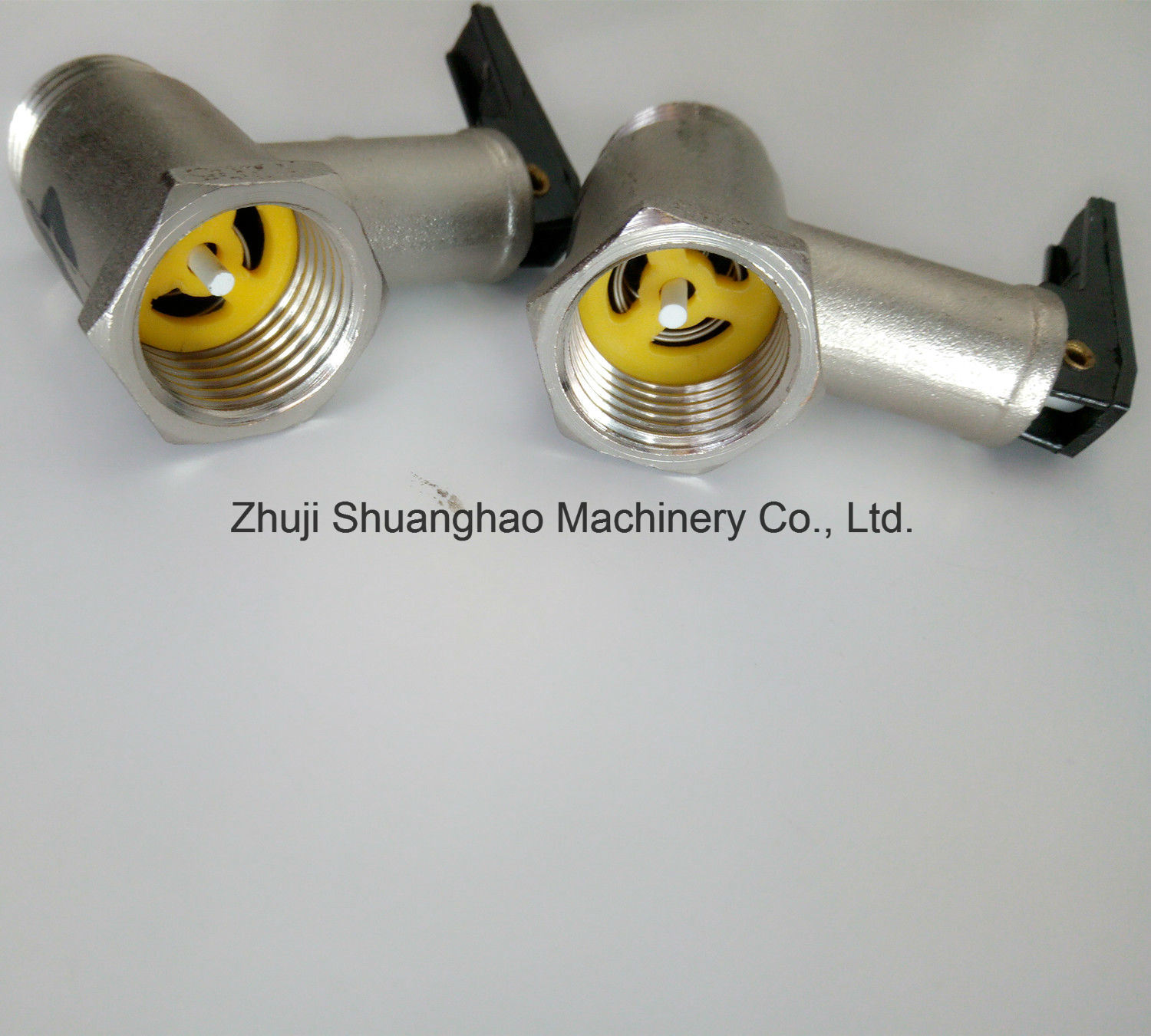 Safety Relief Valve for Water Heaters pictures & photos