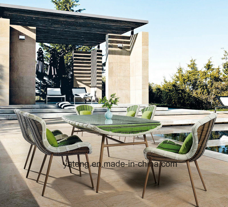 Modern Design Outdoor Garden Furniture Rattan Dining Set with Table & Chair by 6&8 Person Set (YT896-1)