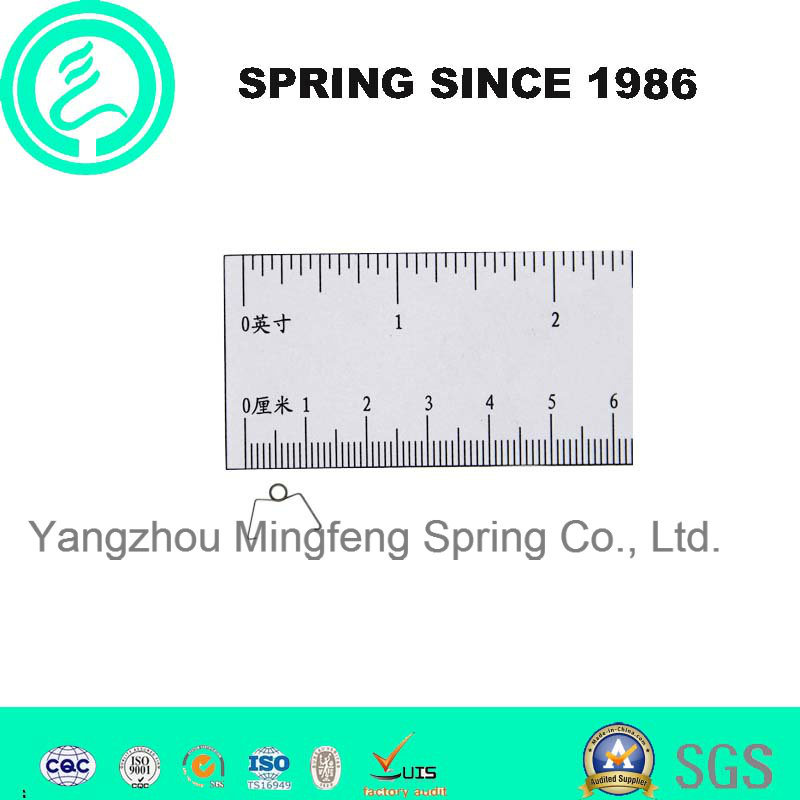Customizetorsion Spring for Fitness Equipment Torsion Spring for Bicyles