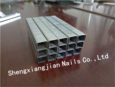 16ga Galvanized Wire Sofa N Staple for Sofa