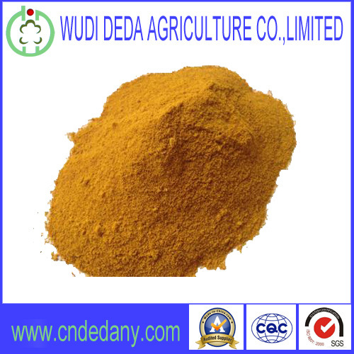 60% Corn Gluten Meal Superior Quality Protein Powder