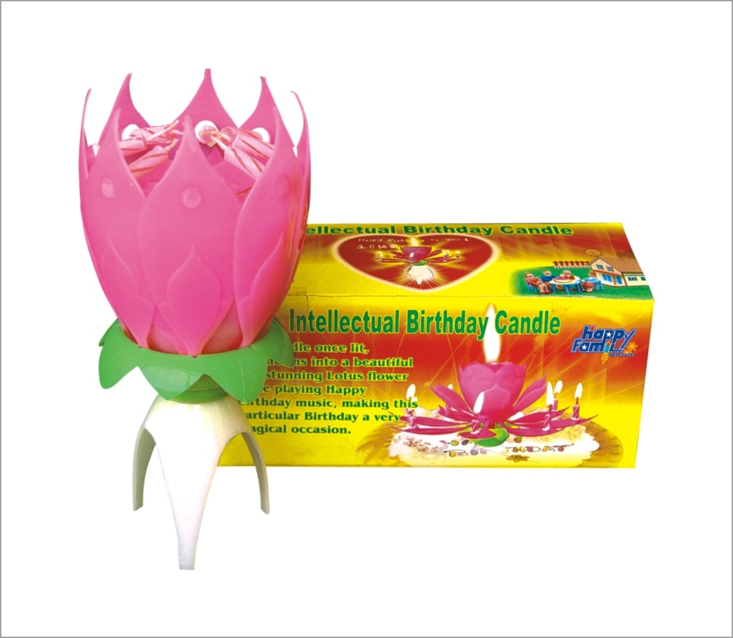 China Intellectual Birthday Candle