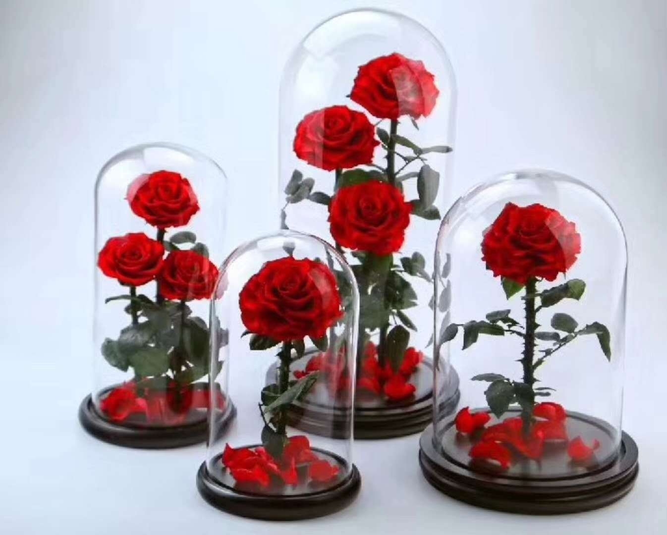 China Natural Preserved Real Roses Flower In Glass Dome Home