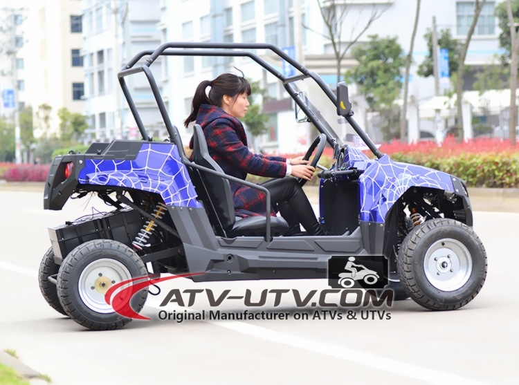 1000W Shaft Drive Electric UTV with Brushless Motor