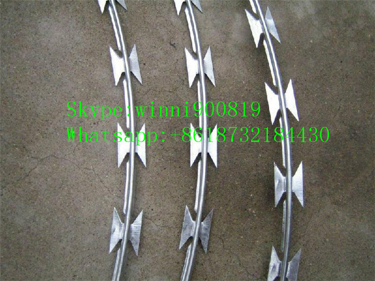 China Supplier High Quality Galvanized Razor Barbed Wire/Concertian Wire Coil/Concertina Razor